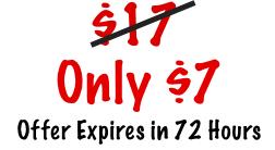 $7 Special